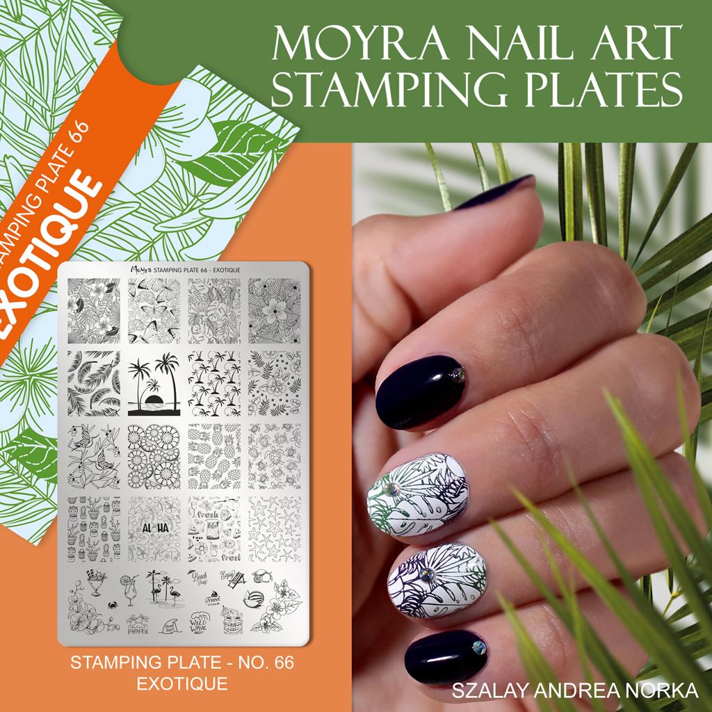 Moyra Nail Art Stamping Plate No. 66 Exotique