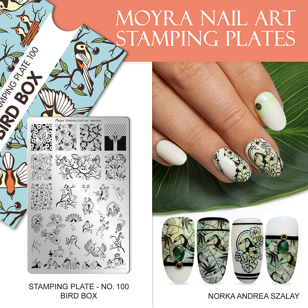 Moyra stamping plate 100 Bird box Inspiration